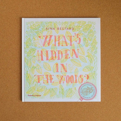 what's hidden in the woods - children's books - theearlyhour.com
